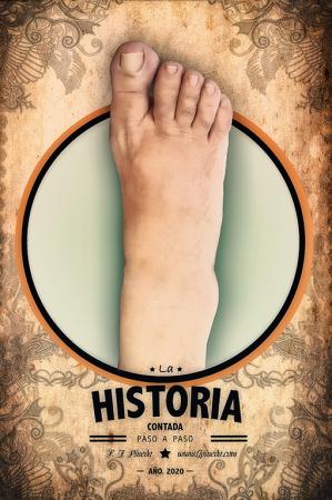 La historia paso a paso de F.J.Pineda